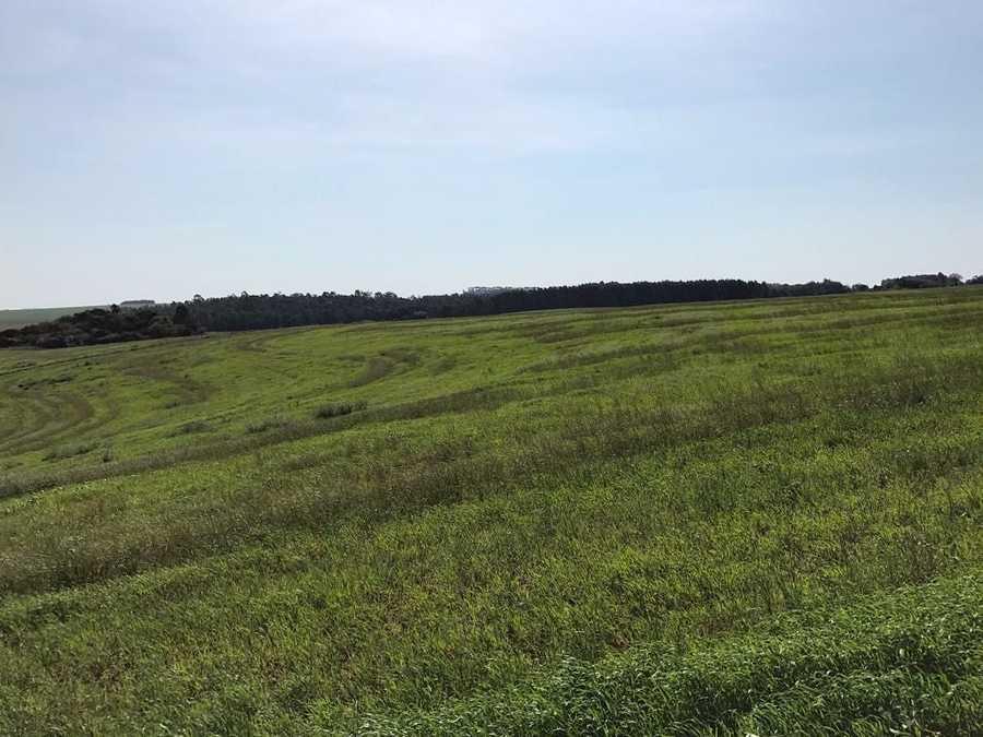 Área Rural, Área de terra