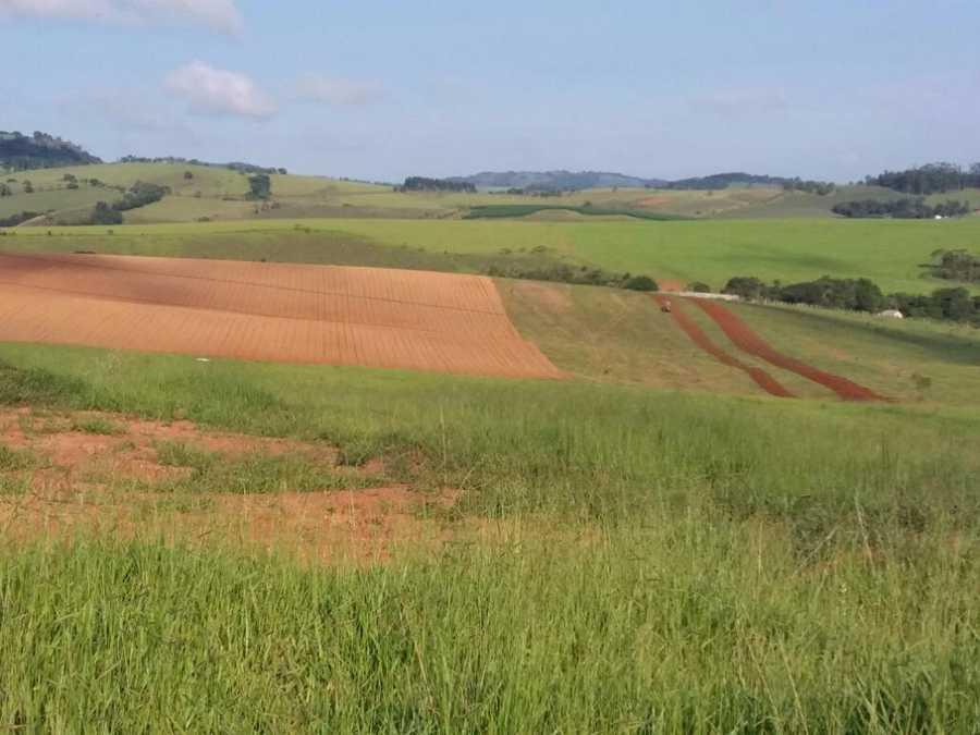 Area Rural, Fazenda